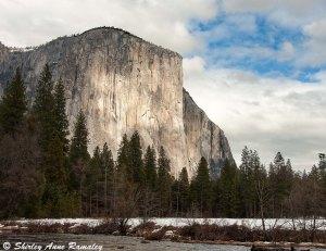 Yosemite (409 of 491)