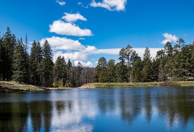 Hulsey Lake 1 MAIN & BLOG