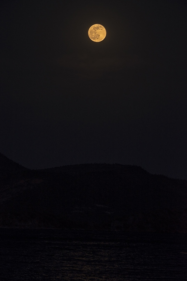 Moon 5 BLOG