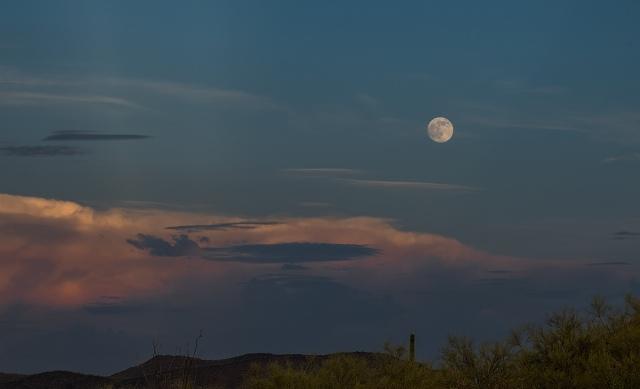 Moon MAIN & BLOG