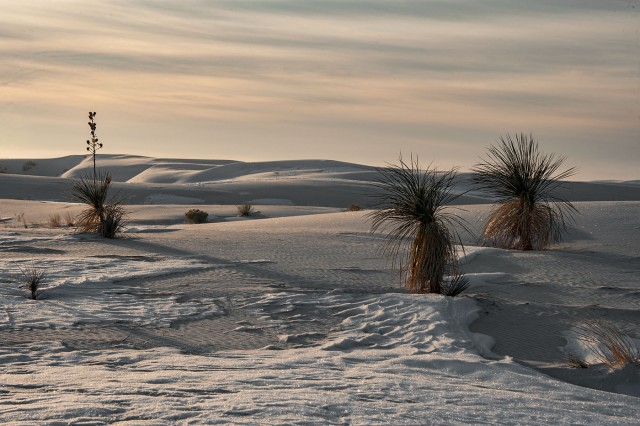 white-sands-2-main-blog