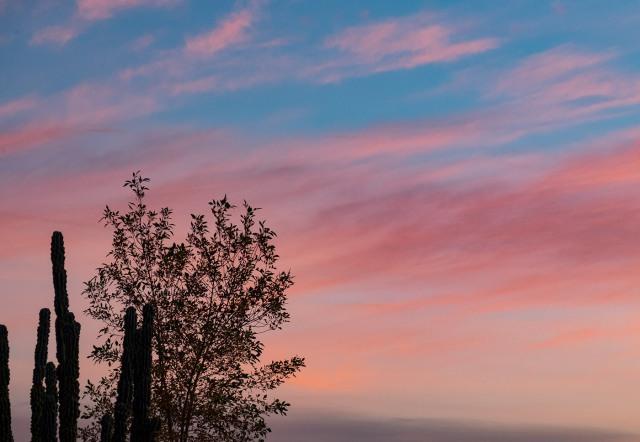 1-10-sunrise-main-blog