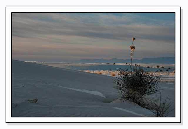 snow-at-sunrise-at-white-sands-main-blog
