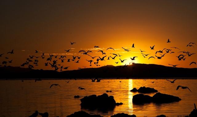 Mono Lake Sunrise LPHOTO, BLOG