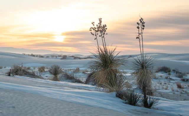 White Sands (20 of 589) LPHOTO, BLOG, AZPHOTO