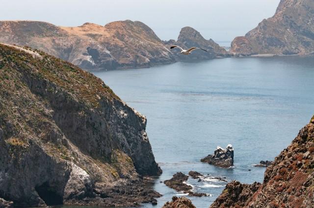 Channel Islands LPHOTO, BLOG