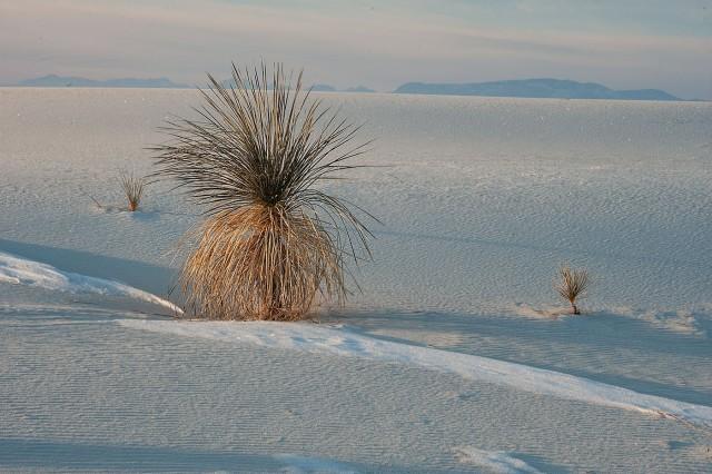 White Sands (160 of 589) MAIN, NAT PARKS, BLOG