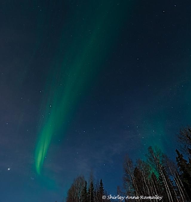 Aurora 5 LPHOTO, BLOG
