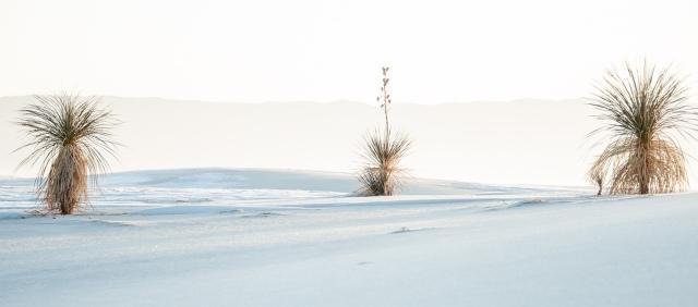White Sands LPHOTO, BLOG, NAT PARKS