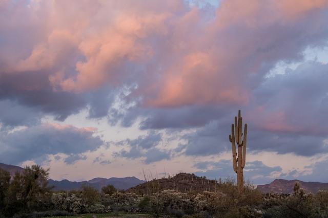 desertsunset1-31-19main2cblog2cphotoofday2c