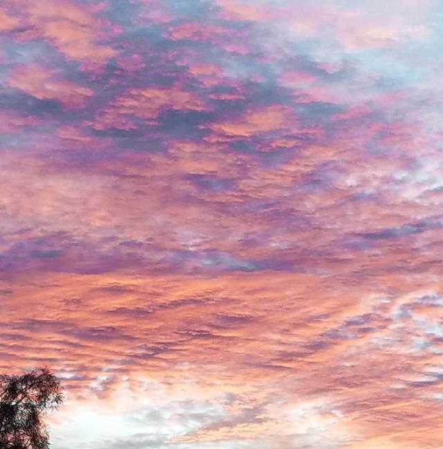 sunset 1-29-19 main, blog, photo of day