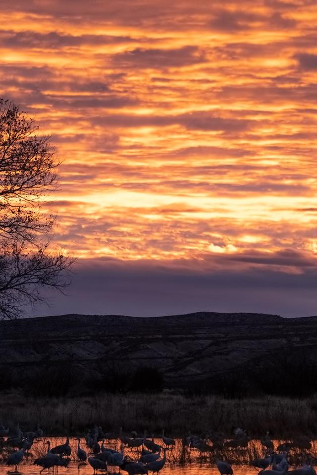Sunset 3 BLOG, MAIN,